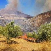 Πρώτη εκτίμηση για την πυρκαγιά στον αρχαιολογικό χώρο των Μυκηνών Μυκήνες Μυκήνες: Πρώτη εκτίμηση για την πυρκαγιά στον αρχαιολογικό χώρο                1 180x180