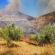 Πρώτη εκτίμηση για την πυρκαγιά στον αρχαιολογικό χώρο των Μυκηνών Μυκήνες Μυκήνες: Πρώτη εκτίμηση για την πυρκαγιά στον αρχαιολογικό χώρο                1 55x55