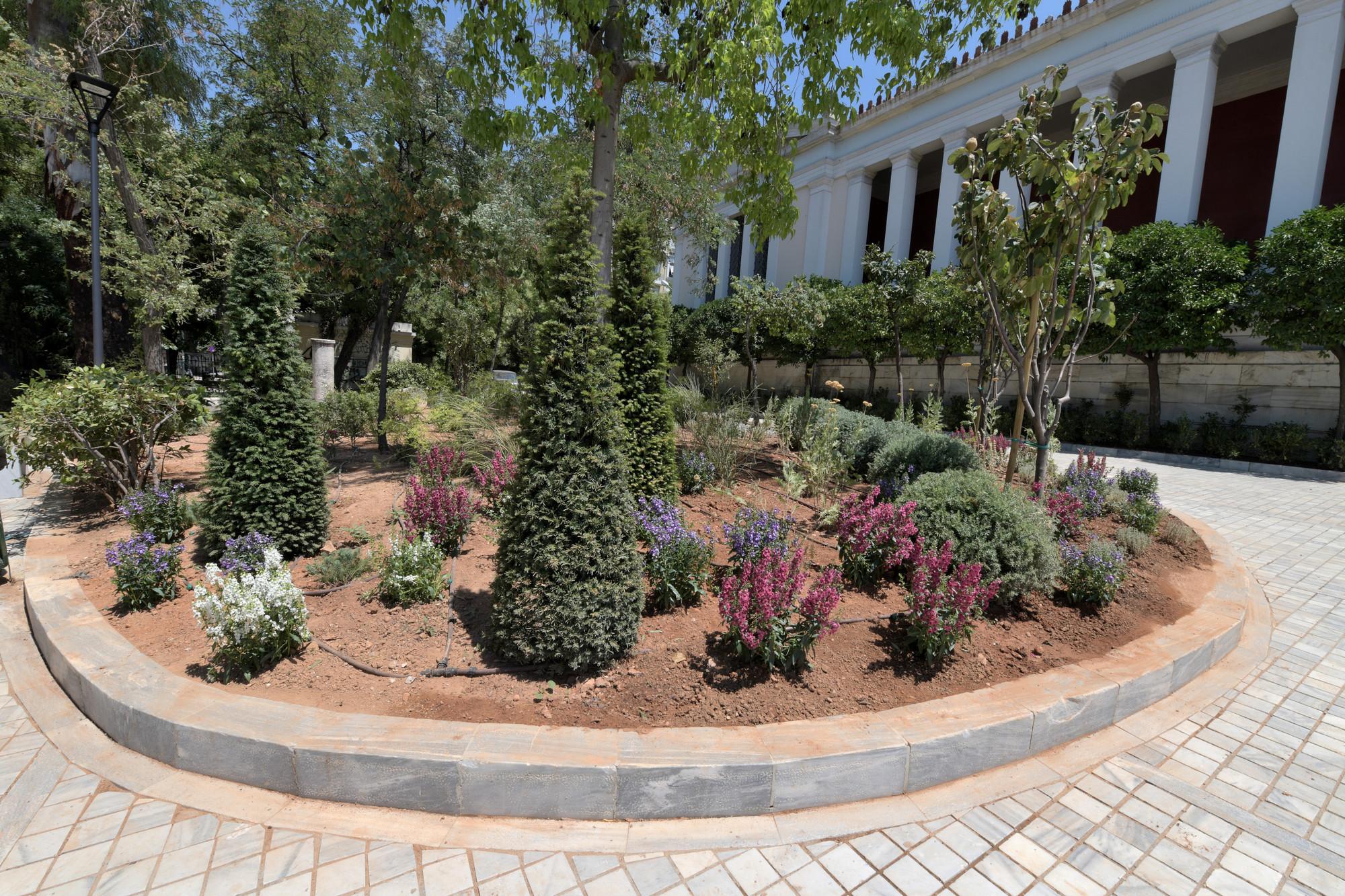 Ο κήπος του Εθνικού Αρχαιολογικού Μουσείου Εθνικό Αρχαιολογικό Μουσείο Το Εθνικό Αρχαιολογικό Μουσείο έχει νέο κήπο DSC 7856