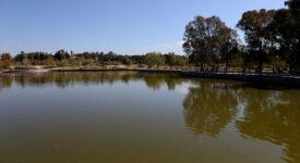 Ξεκινά η στεγανοποίηση της λιμνοδεξαμενής στο Πάρκο Τρίτση Περιφέρεια Αττικής Η Περιφέρεια Αττικής στεγανοποιεί τη  λιμνοδεξαμενή στο Πάρκο Τρίτση IMGL1595 275x150