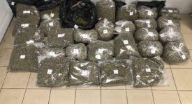 Εντοπισμός ναρκωτικών στη Θεσσαλονίκη  Εντοπισμός ναρκωτικών στη Θεσσαλονίκη                                                                         275x150