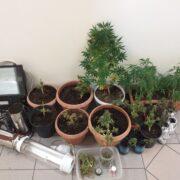 Σύλληψη καλλιεργητή ναρκωτικών στη Σάμο  Σύλληψη καλλιεργητή ναρκωτικών στη Σάμο 05062021vorio 180x180