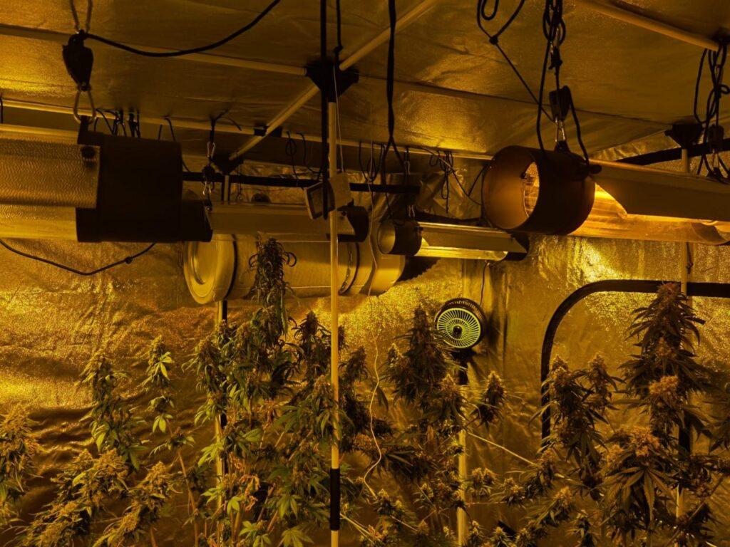 Εξάρθρωση σπείρας διακινητών ναρκωτικών στην Αττική 22062021doa003 1024x768