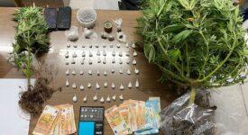Συλλήψεις καλλιεργητών ναρκωτικών στην Αμοργό  Συλλήψεις καλλιεργητών ναρκωτικών στην Αμοργό                                                                                        275x150