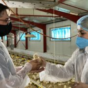 """Φωτεινή Αραμπατζή  Φ. Αραμπατζή: """"Η παραγωγική σύνδεση της επιστήμης με την παράδοση δίνει πολύ μεγάλες δυνατότητες στην κτηνοτροφία"""" ARAMPATZHIOANNINA04 180x180"""