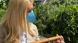 Φωτεινή Αραμπατζή  Διπλασιάζεται στα 12,32 εκατ. ο προϋπολογισμός του Εθνικού Μελισσοκομικού Προγράμματος ARAMPATZHMELISSES01 275x150