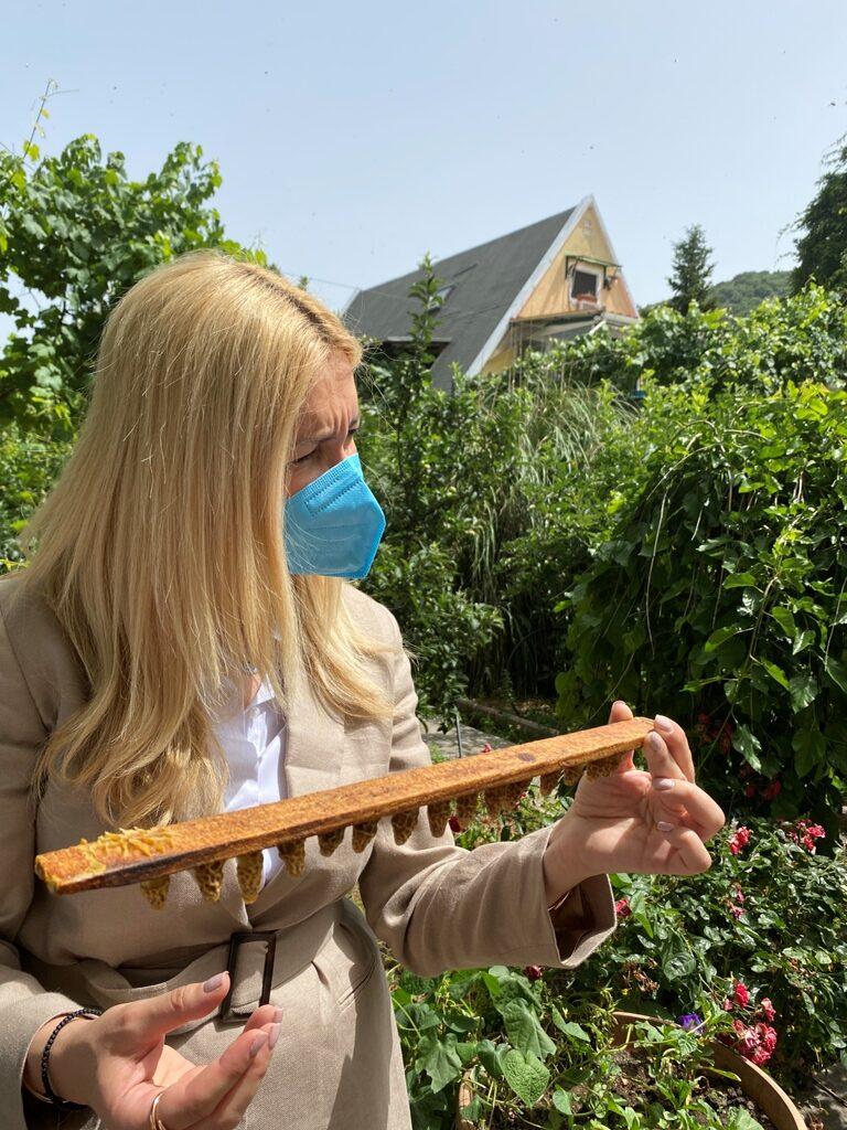 Φωτεινή Αραμπατζή  Διπλασιάζεται στα 12,32 εκατ. ο προϋπολογισμός του Εθνικού Μελισσοκομικού Προγράμματος ARAMPATZHMELISSES01 rotated