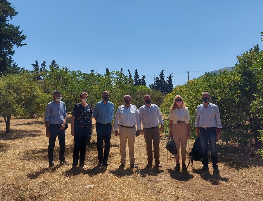 Επίσκεψη Γιάννη Οικονόμου στο Ινστιτούτο Ελιάς, Υποτροπικών Φυτών και Αμπέλου  Επίσκεψη Γιάννη Οικονόμου στο Ινστιτούτο Ελιάς, Υποτροπικών Φυτών και Αμπέλου Photo4 1