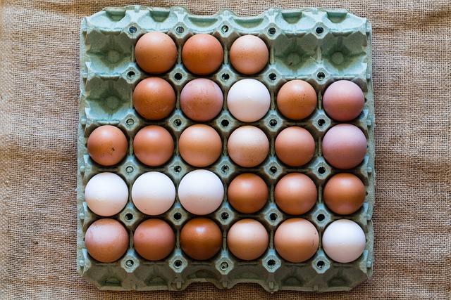 Αποσύρθηκαν 34,5 τόνοι κοτόπουλου και δεκάδες χιλιάδες αυγών ως δήθεν βιολογικά  Αποσύρθηκαν 34,5 τόνοι κοτόπουλου και δεκάδες χιλιάδες αυγών ως δήθεν βιολογικά eggs 6228077 640