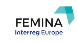 Διαδικτυακή εκδήλωση από τους εταίρους του έργου Femina FEMINA logo 275x150