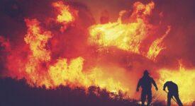 Δασική πυρκαγιά  Εύβοια: Άμεση η εκκένωση χωριών και οικισμών της Δημοτικής Ενότητας Ελιμνύων dasikhpyrkagia04 275x150