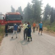 Ξεκίνησε η καταγραφή ζημιών στην Εύβοια pyr09ayg21 180x180