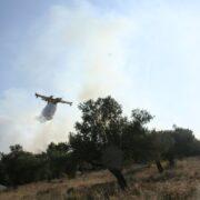 Υπό έλεγχο η πυρκαγιά στη Μακρινή Δωρίδας pyr1 180x180
