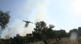 Υπό έλεγχο η πυρκαγιά στη Μακρινή Δωρίδας pyr1 275x150